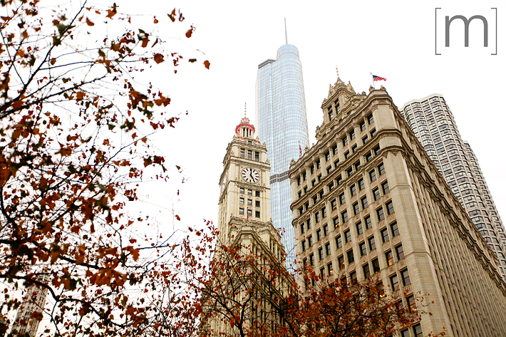 a travel photo of the architecture in chicago