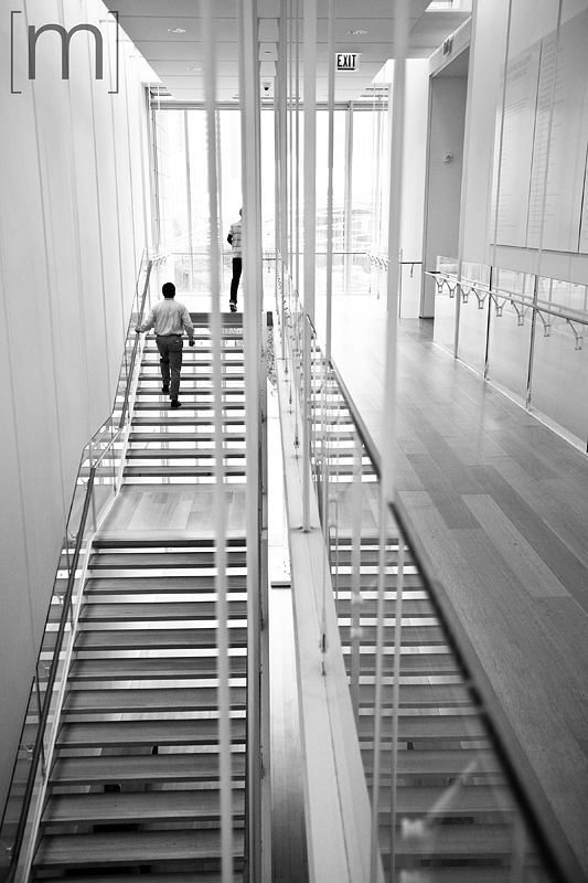 a travel photo of the art institute stairs in chicago