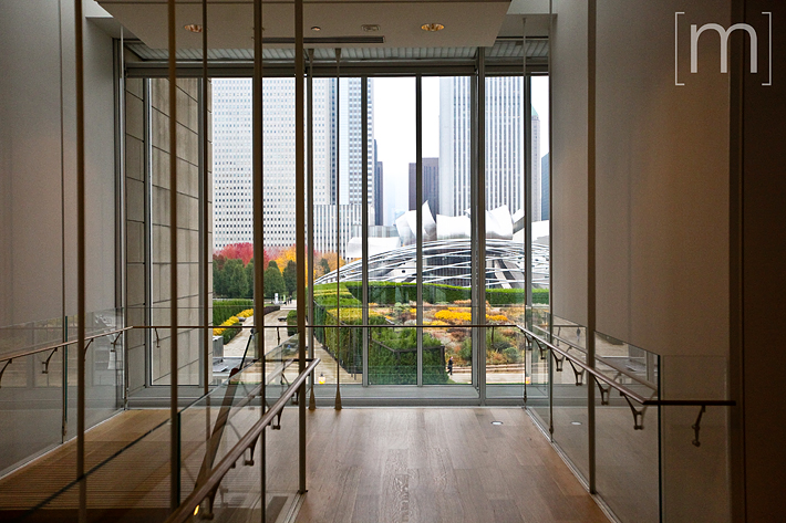 a travel photo of the art institute window in chicago