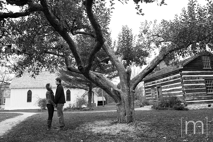 a photo of a couple standing under tree at a fall engagement photoshoot in balls falls