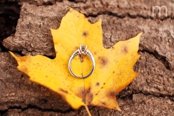 a photo of a ring at a fall engagement photoshoot in balls falls