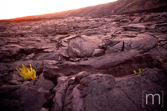 a travel photo of hard lava at sunset at volcano national park hawaii