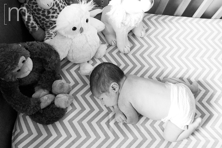a photo of a baby curled up in his crib at new born photoshoot in hamilton