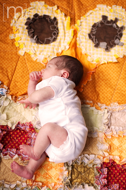 a photo of a baby laying on an owl blanket at new born photoshoot in hamilton