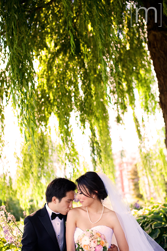 a photo of the couple under a weeping willow at a wedding at toronto music garden