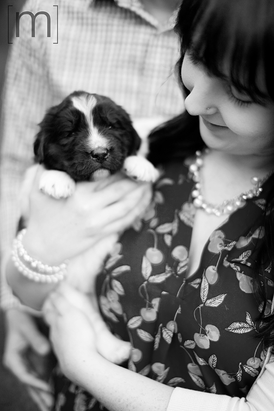 a photo of a couple holding a cute puppy at an engagement shoot in brighton ontari
