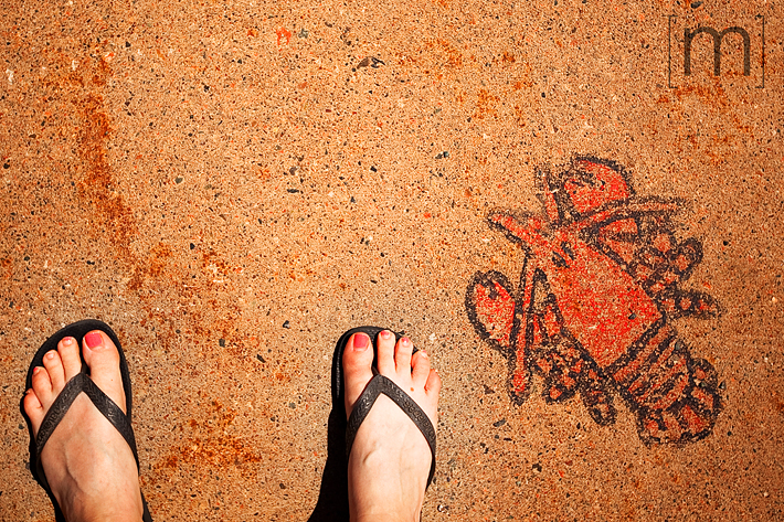 a travel photo of a lobster drawing on the sidewalk in nova scotia