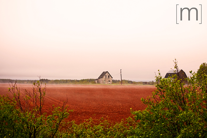 a travel photo of a farmhouse in fog in pei