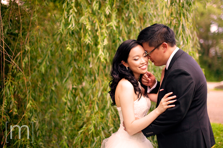 a photo of a couple kissing at a weeping willow at a wedding at angus glen golf club markham
