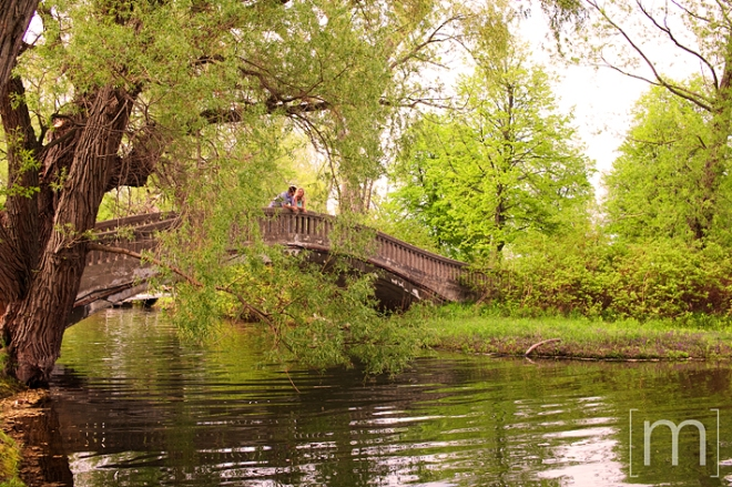 a photo of a coupe on a bridge with weeping willows at a spring engagement shoot on toronto island