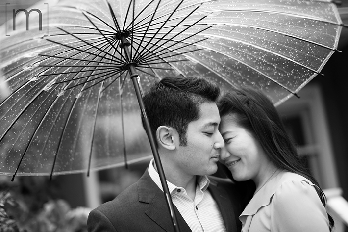 a photo of a couple snuggling under umbrella at a fall engagement shoot at unionville markham